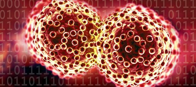 Cancerologia e oncologia, dois nomes e a mesma função