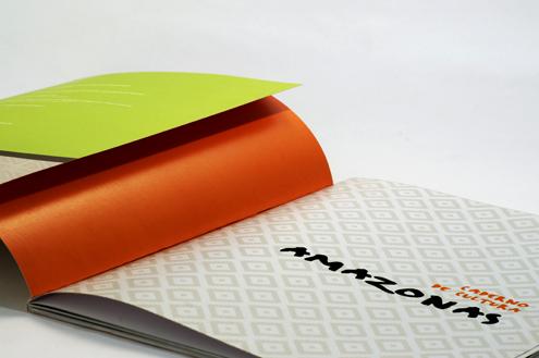 """Livro """"Caderno de Cultura Amazonas"""""""