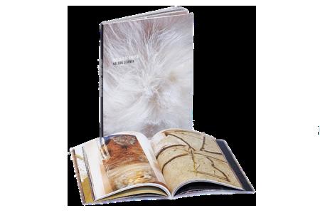 """Livro """"Vestidas de Branco"""""""